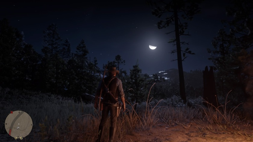 Red Dead Redemption 2_20181101173248