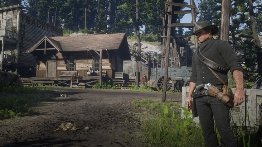 Red Dead Redemption 2_20181106211032